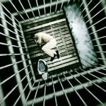 Povratništvo in prevratništvo – zaporski sistem v Sloveniji